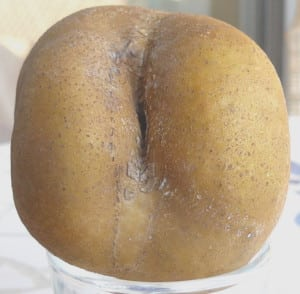 buttock Potato